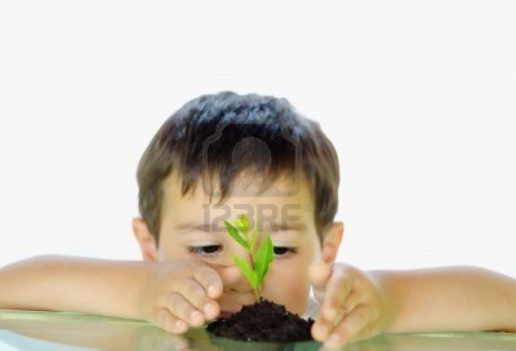 5109859-cute-kid-looking-at-growing-tree-between-his-hands